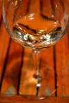 Taste The Season - Reif Chard Glass