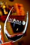 Kacaba - Wine Glass