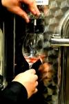 Hinterbrook - Pouring Rose