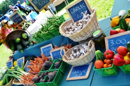 Organic Feast of Fields 2014 - Black Willow Farms