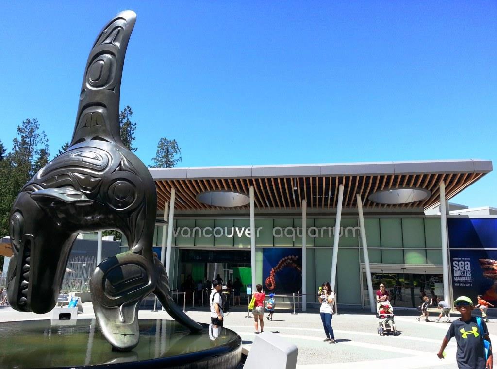 An Underwater Adventure At The Vancouver Aquarium Vancouver Bc Local Lux